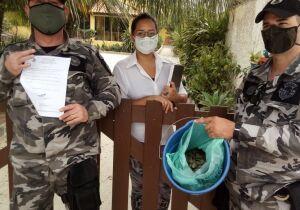 Camarão pescado na Lagoa de Araruama é apreendido e doado para asilo