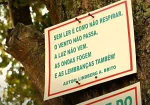 Prefeito José Bonifácio desautoriza notificação que acabava com a Árvore do Saber no Jardim Caiçara
