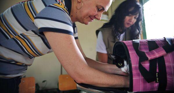 Pesquisa brasileira investiga transmissão de covid-19 entre homens e animais