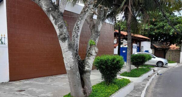 Moradores do Peró reclamam de excesso nas podas de árvores
