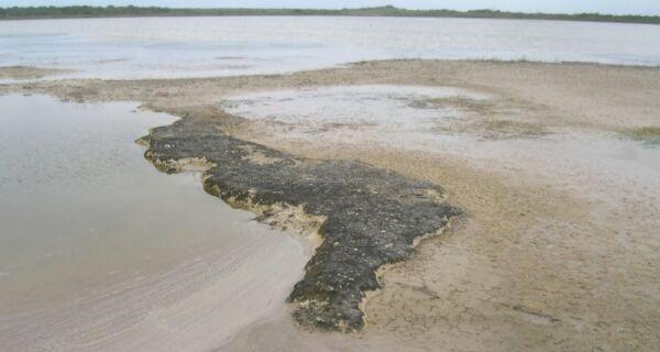 As rochas falam: a natureza viva das pedras do sistema lagunar de Araruama