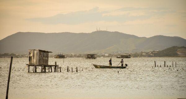 Pescadores comemoram grande quantidade de pescado na Lagoa de Araruama
