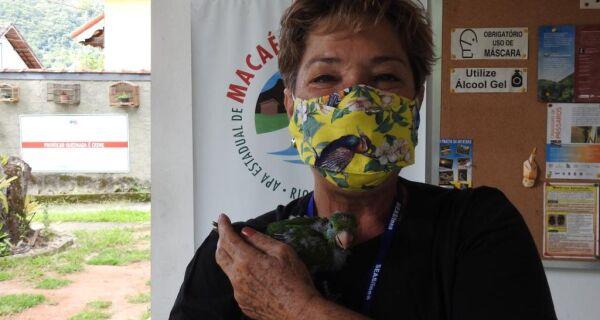 Servidora do Inea recebe prêmio por proteção à Mata Atlântica