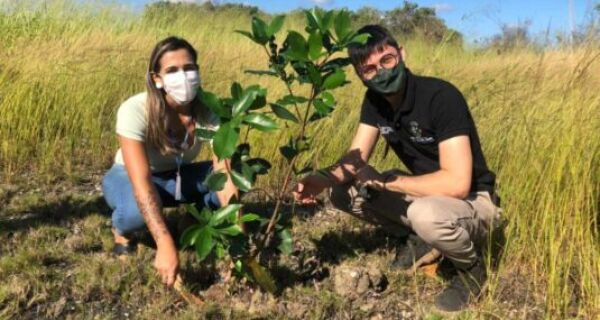 Ação conjunta inicia revegetação de trecho na faixa marginal da Lagoa de Araruama em São Pedro