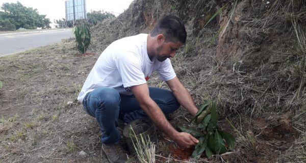 Transformação verde: aldeense planta árvores em antiga área de lixão no Baixo Grande