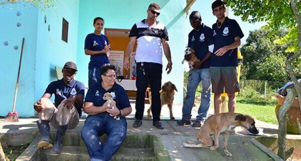 Conta não fecha: a cada 30 cães adotados, cem são abandonados