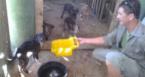 Animais abandonados em horto de São Pedro fazem a alegria de funcionários