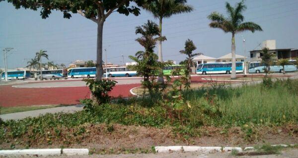 Dezenas de ônibus estacionados no Novo Portinho incomodam moradores