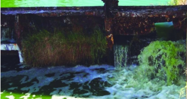 Inea: 80% do esgoto de Arraial é despejado na Lagoa