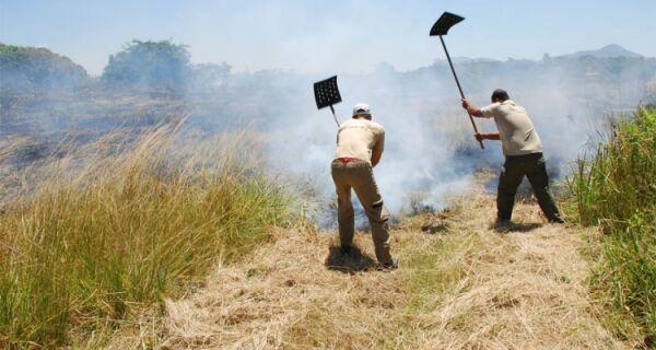 Parque Estadual da Costa do Sol completa cinco anos