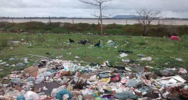 """Urubus, ratos e insetos se proliferam no """"lixão"""" do Guarani"""