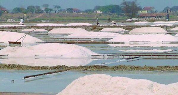 Menos sal e verde: um lugar em transformação