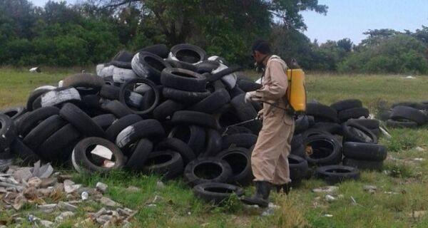Após denúncia da Folha, Prefeitura faz tratamento larvário em pneus