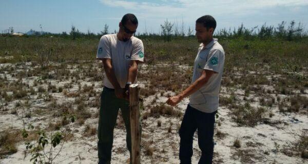 Operação desmonta tentativa de invasão no Parque Estadual da Costa do Sol
