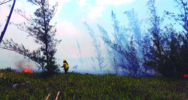 Guarda-parques seguem no combate às chamas no Parque Costa do Sol