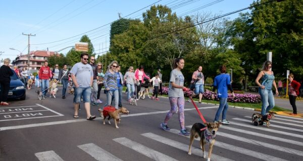 Blocão reúne cães e seus donos na Praia do Forte