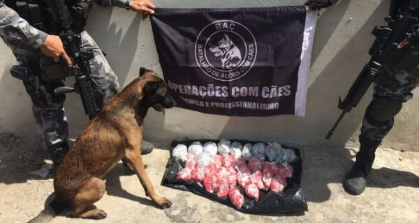Polícia Militar apreende grande carga de drogas no Manoel Corrêa nesta segunda (27)
