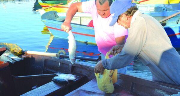 Pescadores de Iguaba comemoram boa fase na pescaria
