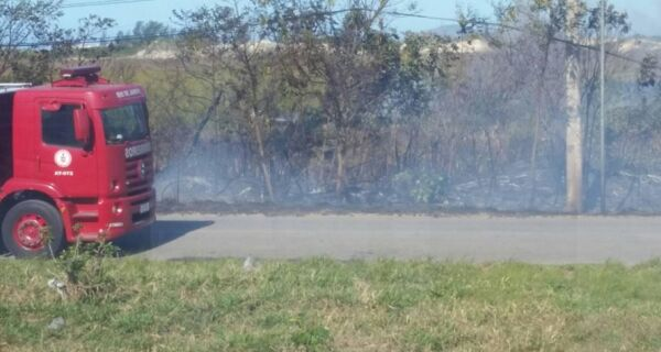 Incêndios na mata desafiam Bombeiros nesta sexta-feira (8)