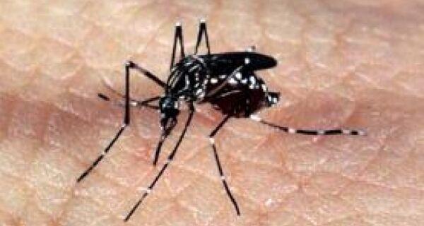 Cabo Frio participa de mobilização no combate à dengue