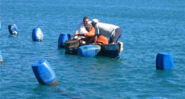 Um mês após vazamento de óleo, maricultura está parada em Arraial