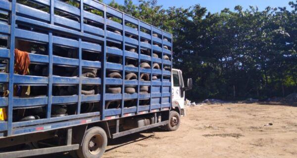 Comsercaf destina quatro toneladas de pneus para reutilização