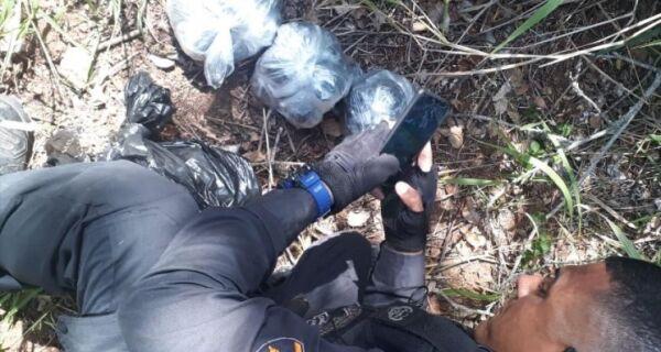 Polícia apreende R$ 42 mil em drogas no Jacaré