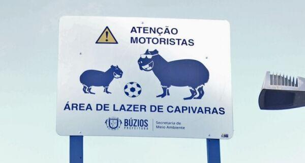 Placas de sinalização sobre a presença de animais são instaladas pela Prefeitura de Búzios