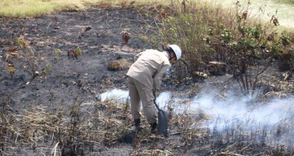 Incêndio na vegetação da Praia do Forte é controlado