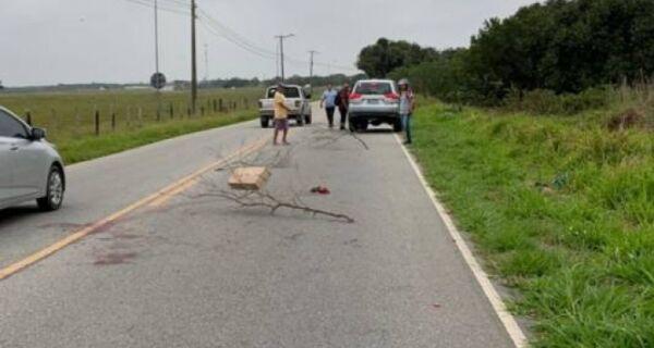 Homem é degolado e cabeça é jogada na estrada do Guriri, em Cabo Frio