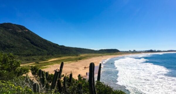 Limpeza dos Mares terá a Praia de Tucuns como cenário neste sábado