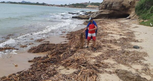 Governo do Estado manda reforço para auxiliar limpeza da vegetação das praias da região