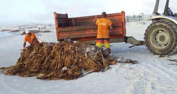 Prefeitura de Cabo Frio faz mutirão para limpeza das praias