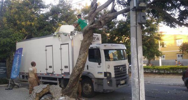 Caminhão arranca árvore pela raiz no Centro de Cabo Frio