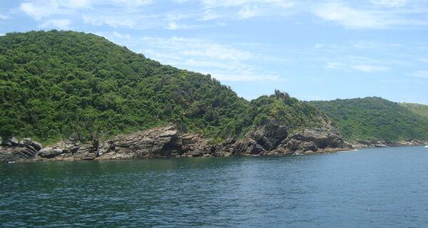 Ilha dos Papagaios recebe projeto de limpeza subaquática neste domingo (12)
