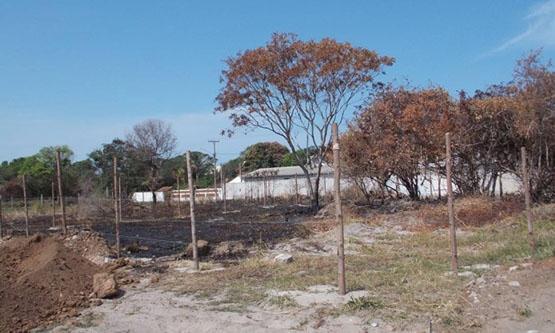 Delegacia de Cabo Frio vai investigar crime ambiental na Estrada do Guriri