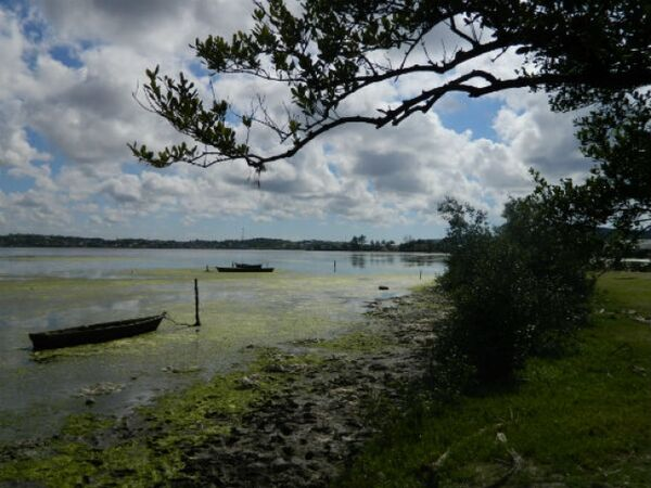 Deputados visitam municípios no entorno da Lagoa de Araruama