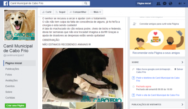 Canil de Cabo Frio ganha o Facebook e reforça que não está recebendo animais