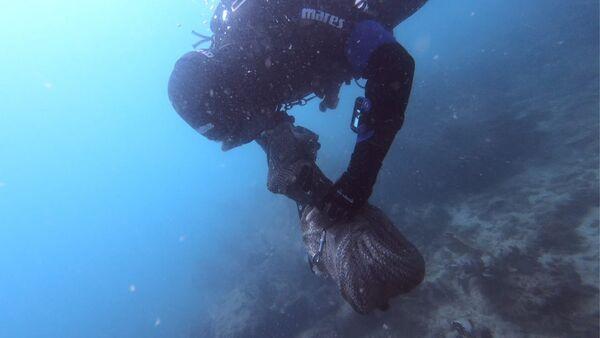Mergulhadores retiram 100 Kg de lixo do fundo do mar em Cabo Frio